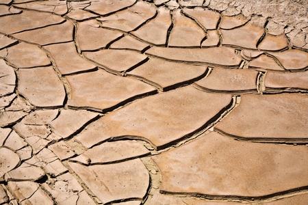 plantas del desierto: secado y agrietado de barro en la cerca de un arroyo seco hasta en el Valle del desierto, Nevada Foto de archivo