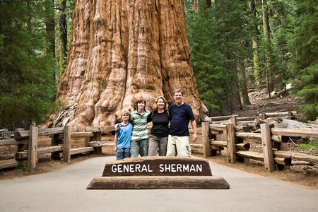 family is posing in Sequoia national Park with old huge Sequoia trees in front of General Sherman tree photo
