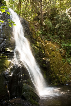 beautiful small waterfall in Sequoia National Park at the small river Cascade Creek near the Christal cave photo