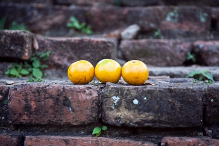 ajutthaya: oranges on old bricks of famous temple area Wat Phra Si Sanphet, Royal Palace in Ajutthaya
