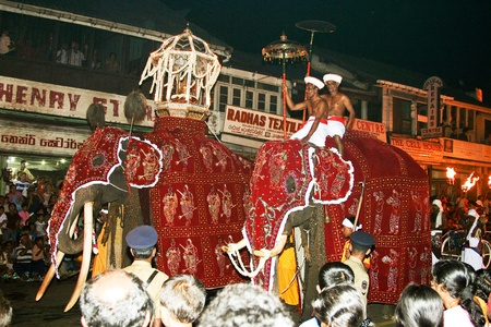 CANDY, SRI LANKA  - August 12: man are riding on their beautiful dressed trained working elefants in the festival Pera Hera in Candy to celebrate the tooth of Buddha  August 12,2005, Candy, Sri Lanka Stock Photo - 9500892