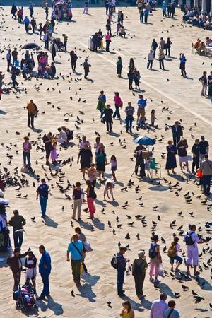 regular: Venezia, Italia - 04 luglio: i turisti su Piazza San Marco nutrono grande Stormo di piccioni 4 luglio 2007. Piazza San Marco � la pi� grande e pi� famosa Piazza di Venezia.