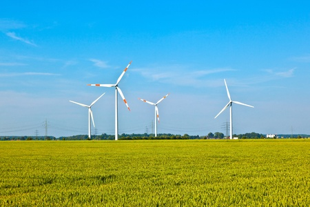 Wind-Energie-Wowers stehen im Feld im Frühjahr