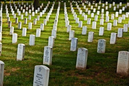 阿灵顿-华盛顿- 7月15日:2010年7月155日,在华盛顿阿灵顿公墓,为阵亡的士兵们竖立的墓碑。这是一个充满敬意和缅怀逝去英雄的地方。