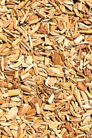 wood shavings on the floor