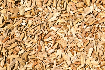 wood shavings on the floor Stock Photo - 9810153