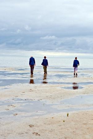 spading fork: people walking in tidal flat