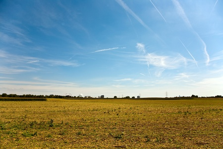 acres: acres after harvest are looking golden in the sun with blue sky