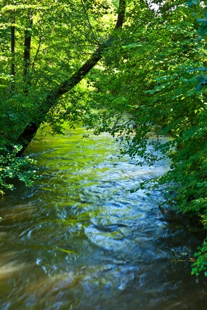 creeks: beautiful river Wuerm with green trees in Munich Stock Photo