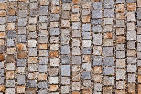 cobble stone path photo