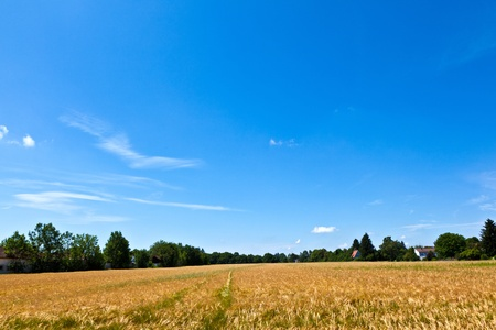 housing area in rural landscape near Munich Stock Photo - 9972767