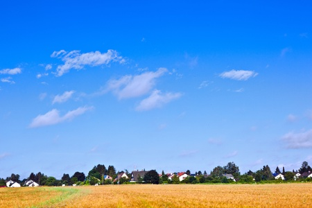 settlement in rural area with fields under blue sky Stock Photo - 9973108