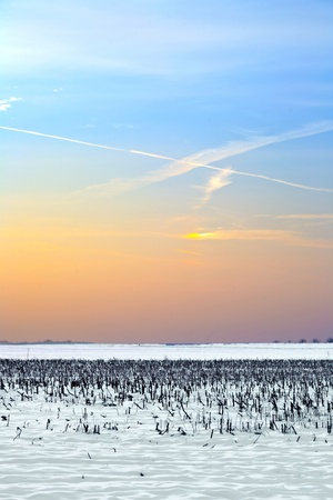covered fields: landscape with snow covered fields in wintertime