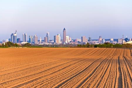 skyline of Frankfurt in sunset photo