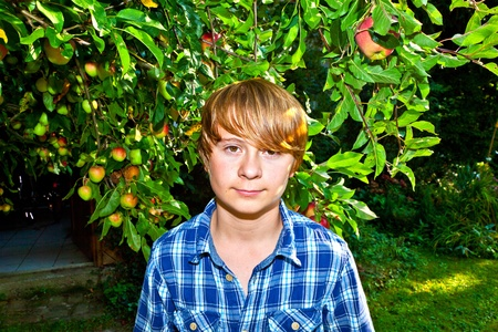 portrait of cute boy in leaves of the tree photo