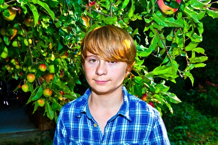 portrait of cute boy in leaves of the tree Stock Photo - 10738102