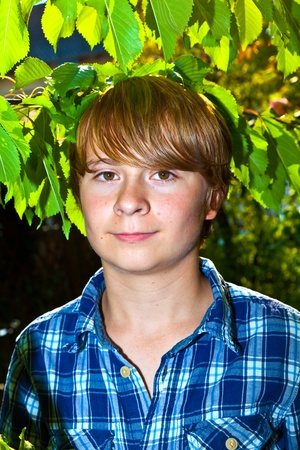 portrait of cute boy in leaves of the tree Stock Photo - 10718489