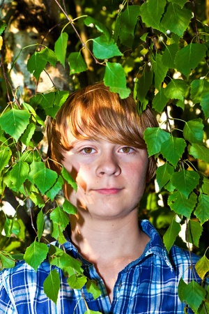 portrait of cute boy in leaves of the tree Stock Photo - 10738103