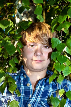 portrait of cute boy in leaves of the tree Stock Photo - 10738100