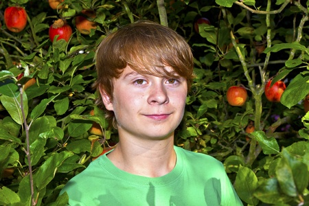 cute smart boy in the garden under the  tree photo