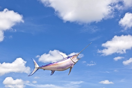 artifical Tuna fish under blue sky photo