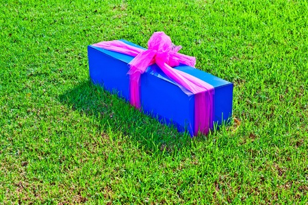gift packed in a box and lying in the grass Stock Photo - 11086892