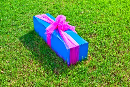 gift packed in a box and lying in the grass photo