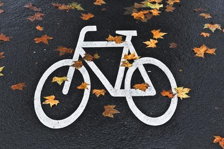 bicycle lane: white mark bicycle lane at the street