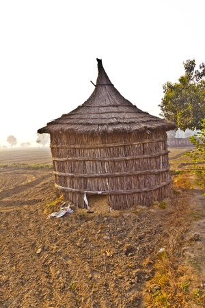 hut of farmer in fields in morning fog photo