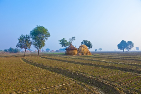 straw hut of local people in India, Rajasthan in early morning light Stock Photo - 11759998