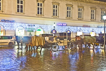 VIENNA, AUSTRIA - NOV 26: famous horse drawm fiaker at the Stephans Dome  by night on November 26,2010 in Vienna, Austria. Since the 17th century, the horse-drawn carriages characterize Viennas cityscape. Stock Photo - 12059817