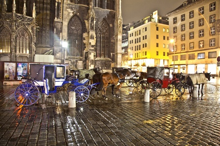 characterize: VIENNA, AUSTRIA - NOV 26: famous horse drawm fiaker at the Stephans Dome  by night on November 26,2010 in Vienna, Austria. Since the 17th century, the horse-drawn carriages characterize Viennas cityscape.