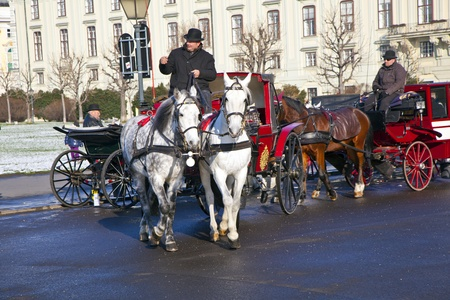 spoked: VIENNA, AUSTRIA - NOV 26: driver of the fiaker wait for tourists on November 26,2010 in Vienna, Austria. Since the 17th century, the horse-drawn carriages characterize Viennas cityscape.