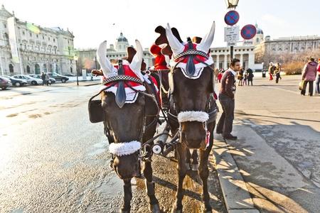 characterize: VIENA, AUSTRIA - NOV 26: conductor del fiaker est� vestido como Santa Claus en Noviembre 26,2010 en Viena, Austria. Desde el siglo 17, los carruajes tirados por caballos caracterizar Viena paisaje urbano.