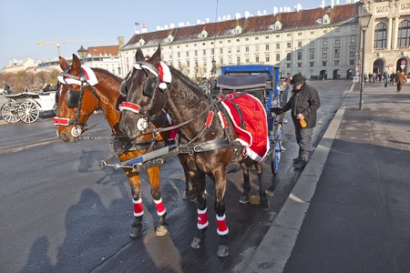 VIENNA, AUSTRIA - NOV 26: driver of the fiaker wait for tourists on November 26,2010 in Vienna, Austria. Since the 17th century, the horse-drawn carriages characterize Viennas cityscape.