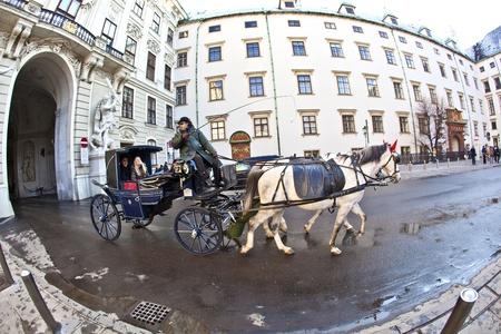 characterize: VIENA, Austria - 26 de noviembre: tirado por caballos fiaker en el Hofburg de noviembre 26,2010 en Viena, Austria. Desde el siglo 17, los carruajes tirados por caballos caracterizan Viena paisaje urbano.