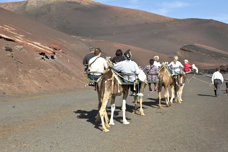TIMANFAYA NATIONAL PARK, LANZAROTE, SPAIN - DECEMBER 26: Tourists riding on camels being guided by local people through the famous Timanfaya National Park in December 26, 2010 in Lanzarote, Spain Stock Photo - 12256623