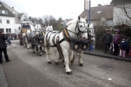SCHWALBACH, GERMANY - BEBRUARY 27: The team of horses  of the brewery moves through the city on February 27, 2011 in Schwalbach, Germany. The brewery Binding sponsores the yearly event with free beer. Stock Photo - 12676897