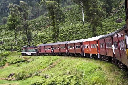estacion de tren: montar en tren el camino tur�stico de monta�a de la Nuwarelia a Colombo