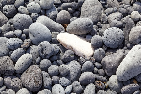 Rock background  at the beach Stock Photo - 13732508