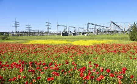 power plant in beautiful flower meadow photo