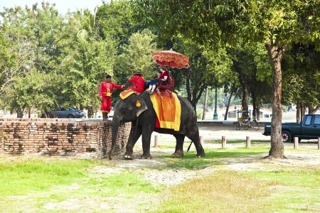 ajutthaya: tourists are riding on an elephant thru the old part of Ajutthaya