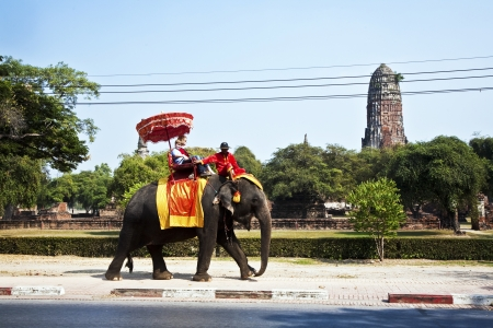 ajutthaya: tourists are riding on an elephant thru the old part of Ajutthaya