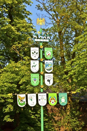 maypole in a german village with green background
