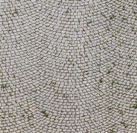 cobbled: old historic cobble stone street with moss