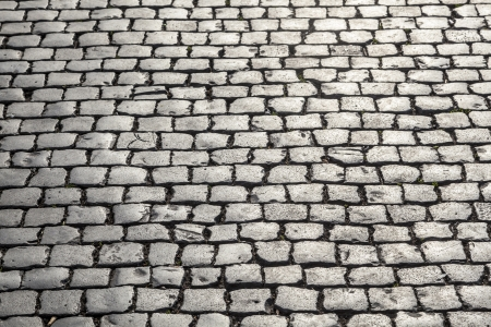 wet floor: old historic cobble stone street with moss
