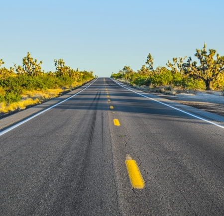 road in sunset Stock Photo - 14505472