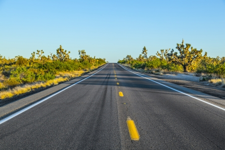 road in sunset photo