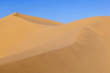 beautiful sand dune in sunrise in the desert Stock Photo - 14505444