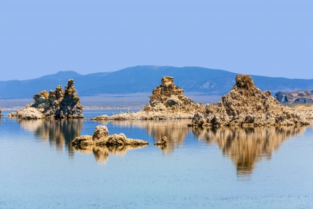 california gull flying over the beautiful Mono Lake in California near Lee Vining photo